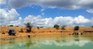 Thanks to the mobile and independent Trunz Water Trailer the water treatment unit is easy to move and relocate. Image above shows the unit at a pond in Kenya.